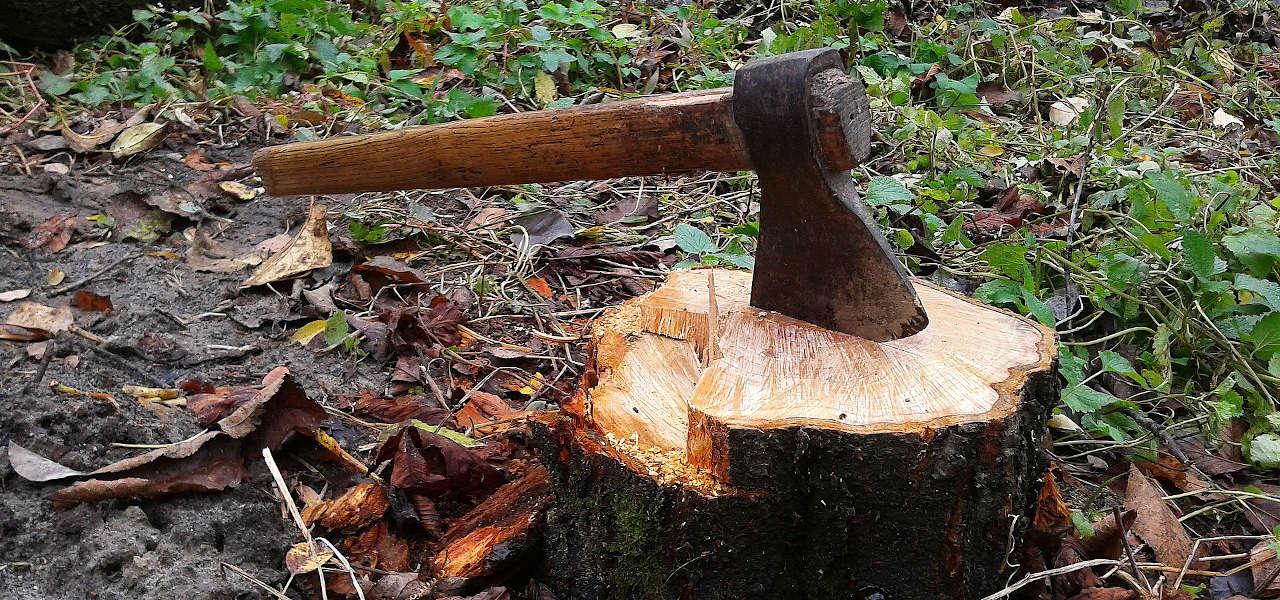 Jak rąbać drewno siekierą